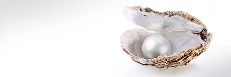 Remuneration Insights: pearls of wisdom from GRG